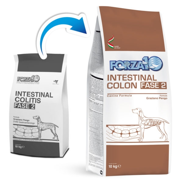 Active Intestinal Colon Fase 2 - Forza10