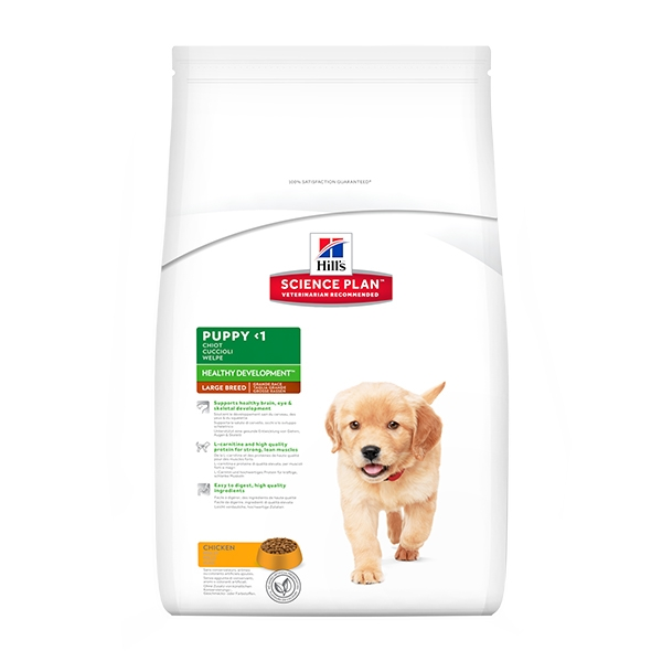 Science Plan Puppy Healthy Development Large Breed con Pollo - Hill's Pet Nutrition