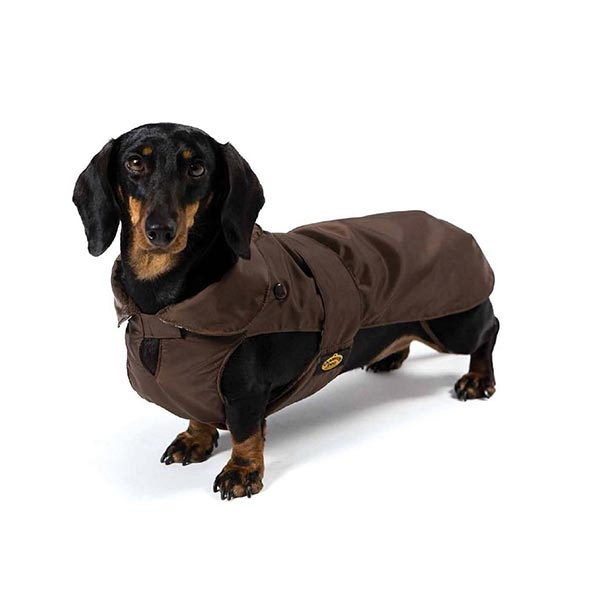 Cappotto Impermeabile con Imbottitura Staccabile Marrone per Bassotto - Fashion Dog