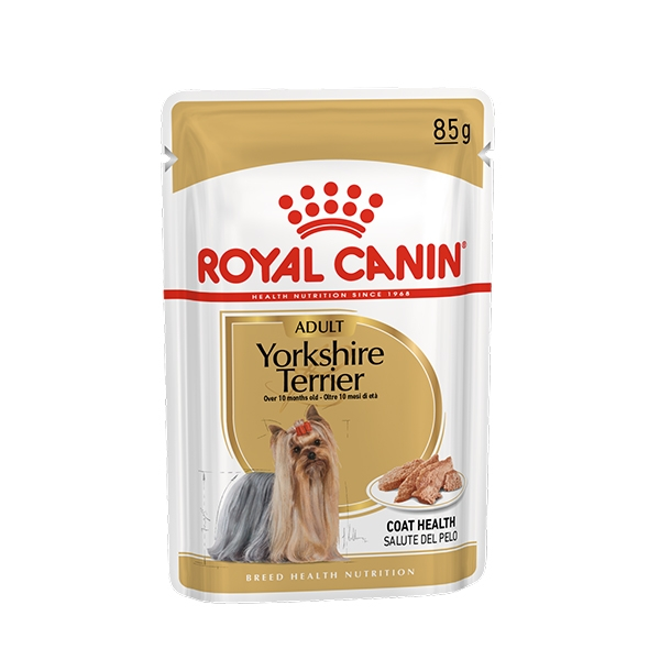 Yorkshire Terrier Adult - Royal Canin
