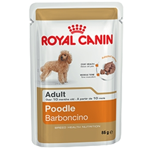 Poodle Adult - Royal Canin