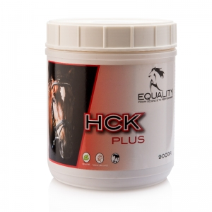 Equality - HCK Plus