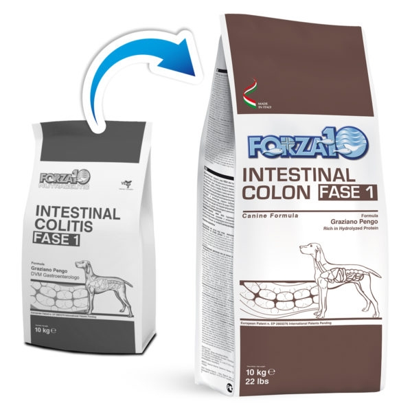 Forza10 - Active Intestinal Colon Fase 1